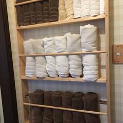 日曜大工/ダイソー/DIY/収納/ハンドメイド/住まい/... 何年か前に作った物ですが、お風呂の脱衣室…(1枚目)
