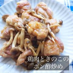 レシピ/鶏肉/きのこ/ポン酢/鶏肉レシピ/しめじ/... 鶏肉ときのこのポン酢炒めです♡簡単に美味…