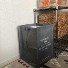 100均購入品/ダイソー購入品/ジョイントできるPP収納BOX/ゴミ箱/目隠し/ダストボックス/...  以前、ゴミ箱、ゴミ袋を目隠しする ダス…