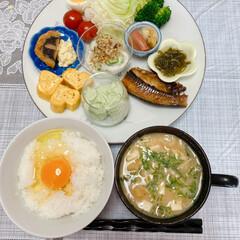 おうちカフェ 朝ご飯出来ました〜😃焼魚、枝豆豆腐、卵焼…