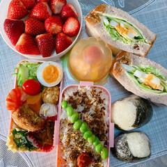 ランチボックス/お弁当/ランチ/お弁当箱/春のお弁当 リモートになってから一段とお弁当🍱🍙を …(1枚目)
