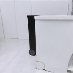 ゴミ箱 クード kcud シンプル スリム 縦型 おしゃれ キッチン 45リットル | イワタニ(ゴミ箱、ダストボックス)を使ったクチコミ「スリムでスタイリッシュ けれど結構ゴミが…」(2枚目)