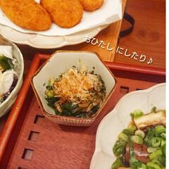 おうちごはん/節約/簡単/時短レシピ/ラク家事/冷蔵庫収納/... 先日スーパー行ったら小松菜2袋¥100で…(6枚目)