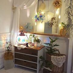 ランプ/ダイニング/ダイソー/DIY/雑貨/暮らし/... 部屋の電気を消してランプの明かりでのんび…