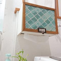 手洗い/洗面所/100均アレンジ/100均/100均アイテム/DIY/... 100均アイテムでDIYしたペーパータオ…