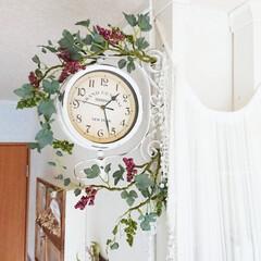 お気に入り/時計/両面時計/ワイヤー入りフェイクグリーン/100均フェイクグリーン/玄関あるある/... お気に入りの我が家時計です😉✨ 時計のま…