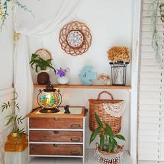 イシグロ 照明器具 21207 モザイクランプ クリムト ランタン型 グリーン(デスクライト)を使ったクチコミ「我が家のリビングに作った棚✨  お庭で育…」