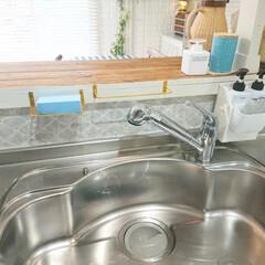 ニトリ/スポンジ/超吸水スポンジ/シンク/キッチン雑貨/キッチンインテリア/... キッチンの水回りで大活躍の ニトリの吸水…