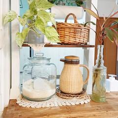 丸和貿易 ガラスびん フタ付 グラスジャー 3300ml ラージ No.3 400471100(米びつ)を使ったクチコミ「我が家のお米はガラスジャーに入れて置いて…」