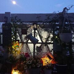 建売住宅/マイガーデン/ガーデン/ナチュラルガーデン/diyウッドデッキ/月/... 今日は月が綺麗でウッドデッキに出てpic…