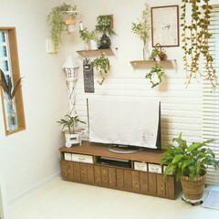 100均DIY/100均/DIY/テレビ台/グリーンのある暮らし/グリーンインテリア/... リビングのテレビ台です🎵  庭で育ててい…
