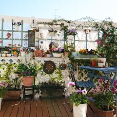 庭/グリーンのある生活/グリーンのある暮らし/花のある生活/花のある暮らし/お花/... 我が家の庭に作ったウッドデッキです💕✨ …