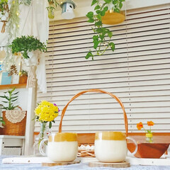 おやつ/コーヒー/おうちカフェおうち時間/ダルゴナコーヒー/暮らし/おうちカフェ/... 今日のおやつに作ったダルゴナコーヒー😊✨…