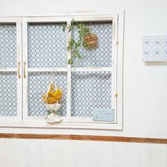 原状回復/窓枠DIY/花のある暮らし/ミモザバッグ/ミモザ/DIY/... 昨日投稿した ミモザバッグ💐🛍️DIYで…