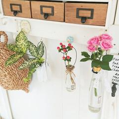 小物入れdiy/花瓶/花のある暮らし/medelu/お花/100均/... 先日いただいたお花、花瓶を別々にして飾っ…