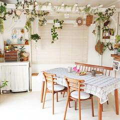 グリーンのある生活を目指して/グリーンのあるインテリア/グリーンのある暮らし/花のある生活/花のある暮らし/DIY女子/... いつもとちょっと違う角度にテーブルを置い…