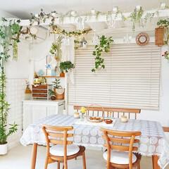 インテリア/グリーンのあるインテリア/グリーンのある生活/グリーンのある暮らし/diyダイニング/DIY/... 今日は1日中雨で寒かったので お家カフェ…