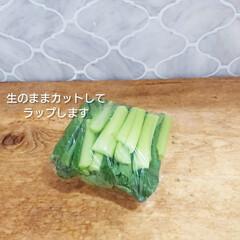 おうちごはん/節約/簡単/時短レシピ/ラク家事/冷蔵庫収納/... 先日スーパー行ったら小松菜2袋¥100で…(2枚目)