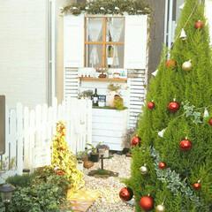 ガーデニング/DIYアプローチ/DIY/玄関/玄関アプローチ/クリスマスガーランド/... 玄関アプローチです🎄✴ 入口のゴールドク…