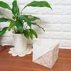 暮らし/暮らしのアイディア/エコ/エコな暮らし/包装紙再利用/包装紙/... 7月から始まったポリ袋の有料化🌿  皆さ…