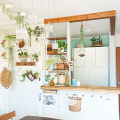 キッチンDIY/壁紙/塗料/キッチン/キッチン壁紙/簡単/... 我が家のキッチンの壁紙は 塗料を直接塗っ…