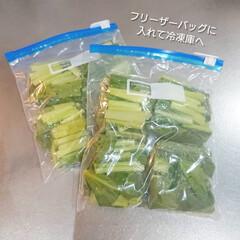 おうちごはん/節約/簡単/時短レシピ/ラク家事/冷蔵庫収納/... 先日スーパー行ったら小松菜2袋¥100で…(3枚目)
