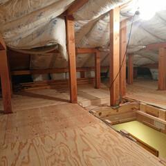 ホームセンター/セルフリノベ/セルフリフォーム/セルフ/セルフリノベーション/多肉植物/... 屋根裏部屋の床張り完了❗ これから断熱材…