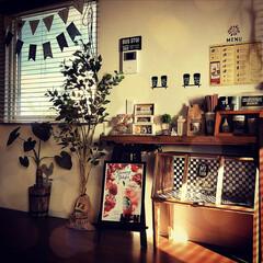 カフェ風/スターバックス/ショーケース/観葉植物/インテリア/DIY/... ショーケースに脚を付けて、中を市松模様に…