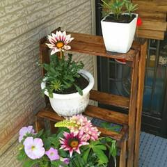 棚DIY/花壇DIY/ガーデニング/ハンドメイド/住まい/暮らし 旦那さんが棚を作ってくれたので、 玄関も…