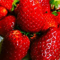 果物/イチゴ/暮らし たくさんのいちご、 頂きました😃