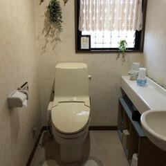 トイレ掃除/トイレ 梅雨に入っていきなりこの雨と風☔️🌀 せ…