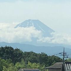 富士山/いい天気 おはようございます☀ こちらも久々に富士…