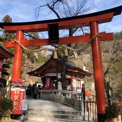 金櫻神社/初詣 今日は、待ちに待ったお休みでした‼️ ま…