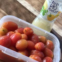 レモンドレッシング/ミニトマト 暑くて食欲がない時には、これ‼️ 家庭菜…