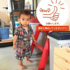 1歳児/男の子/赤い脚立/はだし 原田建設スタッフの息子さん 1歳児には見…