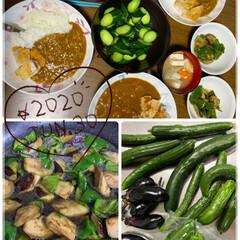 おうちごはん/レトルトカレー/夜ご飯/野菜 今日の夜ご飯♡ 近所の方に野菜を頂いたの…