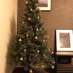 マンションインテリア/額/写真/エコカラット/ダイニング/クリスマスツリー/... 新しいクリスマスツリーをダイニングに迎え…