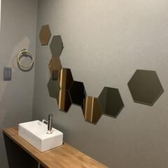 IKEA トイレの鏡はIKEAのホーネフォッスを好…(1枚目)