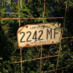 モッコウバラ/目隠しフェンス/ナンバープレート/雑貨 以前作ったモッコウバラを誘引する目隠しフ…
