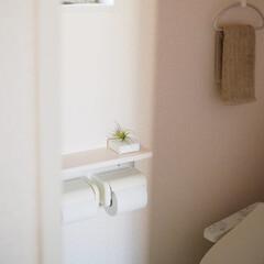 トイレ/便所/ニオイ/消臭/消臭剤/脱臭剤/... 皆さん、トイレのニオイ対策どうしてますか…