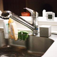 台所/キッチン/シンク/カビ/生ゴミ/三角コーナー/... キッチンのシンクは、カビが発生する餌や水…
