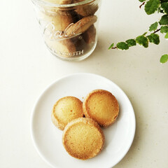 バター/サブレ/シンプル/クッキー/手作り 厚みがありながらサクッと軽い食感の、バタ…