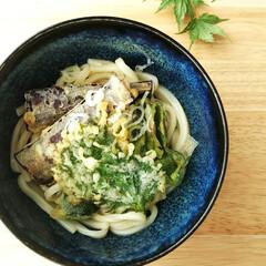 天ぷら/うどん/冷やしうどん/お昼ごはん/夏野菜 採れたての夏野菜を使って天ぷらを作り、冷…