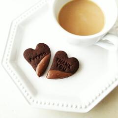 ココアクッキー/チョコがけ/バレンタイン2020 甘さ控えめのココアクッキーとミルクチョコ…