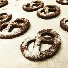ココア/クッキー/プレッツェル ココアクッキーをプレッツェル型で抜いたも…