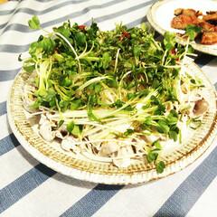 貝割れ大根/豚肉/もやし/ピリ辛/夕飯 家族が作ってくれた、薄切りの茹でた豚肉・…