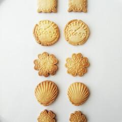 マクロビ/クッキー/バタークッキー 右はマクロビ生地、左はバターを漬かった生…