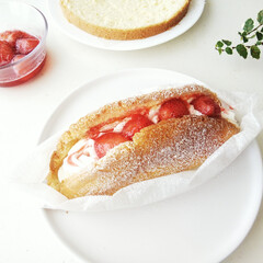 フィカス・プミラ・サニーホワイト | chanet(観葉植物)を使ったクチコミ「スポンジケーキを、とあるクリームと合わせ…」