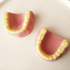 歯/ストロベリー/チョコ/バレンタイン2019 歯形チョコのフォト、反応があって嬉しいで…