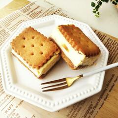 チーズケーキ/クッキー/レモンピール/ラムレーズン 今日も今日とてチーズケーキサンド。 わか…
